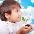 Little cute child holding green plant in hands — Stockfoto