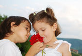 Beautiful scene of a boy and girl with rose — Stock Photo