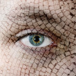 Cracked skin, closeup of green eye. — Stock Photo