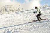 Skier on snow — Stock Photo
