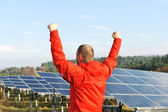 Success, engineer in solar panel fields with arms up — Stock Photo