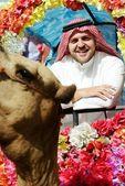 Adam dekore edilmiş camel biner — Stok fotoğraf