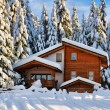Stock Photo: Winter beautiful snow house in forest