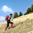Walking uphill womtrekking and hiking mountaineering — Stock Photo #26229899