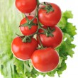 Stock Photo: Fresh red tomatoes on plant