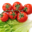 Tomato isolated with lettuce — Stock Photo #26230461
