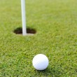 Golf ball on green grass — Stock Photo #26238279