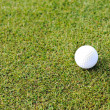 Golf ball on grass field — Stock Photo
