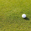 Golf ball on grass field — Stock Photo #26238749