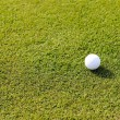 Stock Photo: Golf ball on grass field