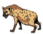 Hyena. — Stock Photo