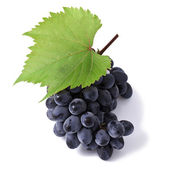 Grape — Foto de Stock