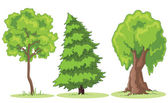 Cartoon trees — Stock Photo