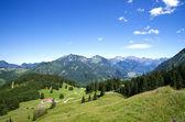 Alpine meadow allgau germany — Stock Photo