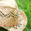 Straw hat on the grass — Stock Photo #12793494