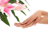 Beautiful woman hands and lily flower — Stock Photo