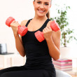 Young woman workout with dumbbells on fitness ball - Stock Photo