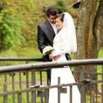 hermosa novia y el novio feliz en el parque otoño — Foto de Stock   #18078341