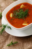 Image of bowl of hot red soup served with parsley — Stock Photo