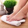 Image of SPA pedicure — Stock Photo