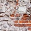 Wall from red bricks — ストック写真
