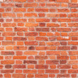图库照片: Wall from red bricks