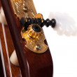Closeup image of guitar fingerboard — Stok fotoğraf