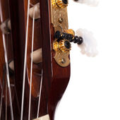 Closeup image of guitar fingerboard — ストック写真
