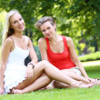 Постер, плакат: Two girls are having fun in the park