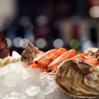 Cancers with oysters in ice — Stockfoto