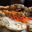 Cancers with oysters in ice — Stock Photo