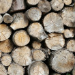 Stock Photo: Lots of timber