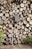 Lots of timber — Stock Photo