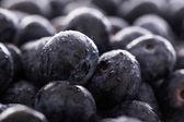 Massor av blåbärブルーベリーの多く — Stockfoto