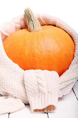 Pumpkin wrapped in a sweater — Stock Photo