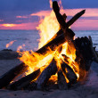 Bonfire on the beach — Stock Photo #37053541
