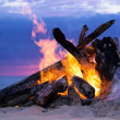 Bonfire on the beach — Foto de Stock