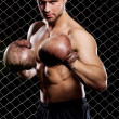 Guy with a boxing gloves showing muscles on fence background — Stock Photo #37622425