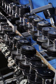 Set up with dumbbells — Photo