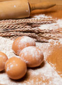 Rolling pin and eggs in flour — Stock Photo
