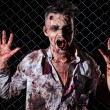 Zombie on fence — Stock Photo #39834351