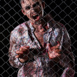 Scary zombie behind fence — Stock Photo #39834393