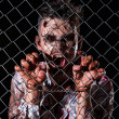 Scary zombie behind fence — Stock Photo #39834399