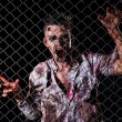 Stock Photo: Scary zombie behind fence