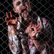 Scary zombie behind fence — Stock Photo #39834405