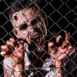 Scary zombie behind fence — Stock Photo #39834407