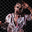 Scary zombie behind fence — Stock Photo #39834417