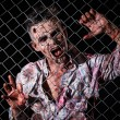 Scary zombie behind fence — Stock Photo #39834427
