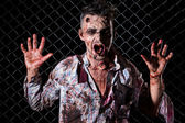 Zombie on the fence — Stock Photo