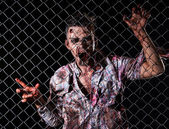 Scary zombie behind the fence — Stock Photo